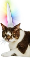 acc070-unicorn-horn-for-cats